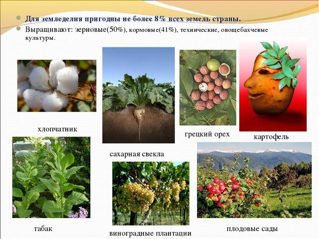 Для земледелия пригодны не более 8% всех земель страны. Выращивают: зерновые(...