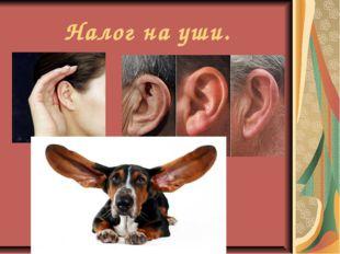 Налог на уши.