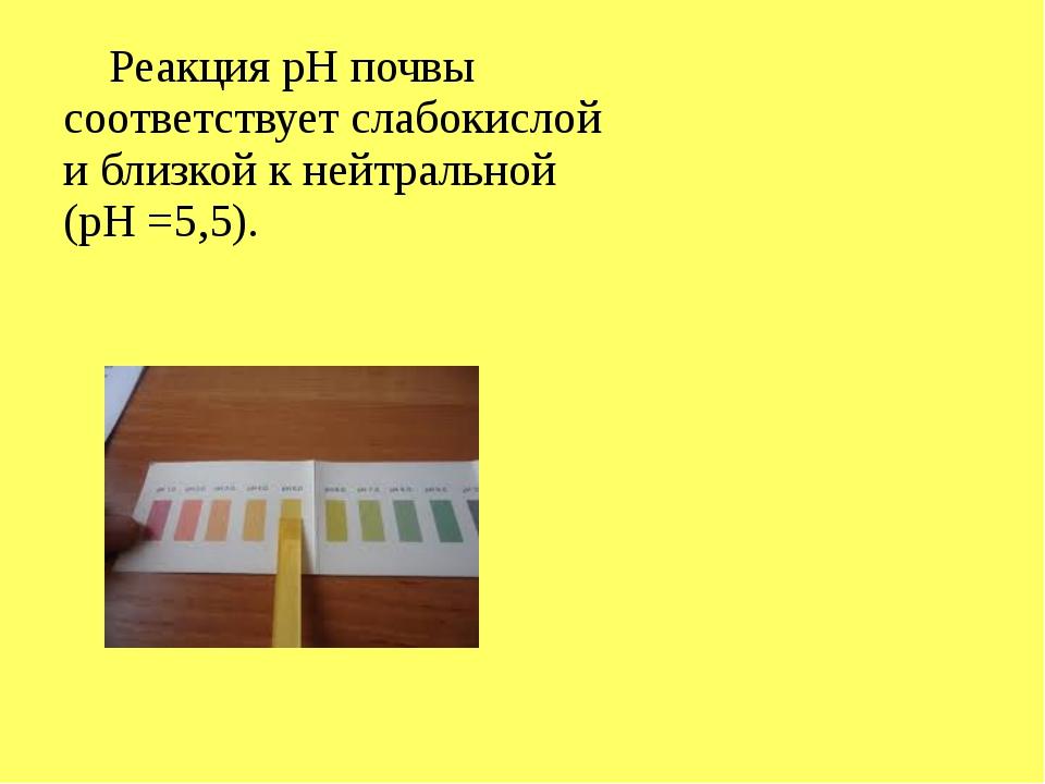 Реакция рН почвы соответствует слабокислой и близкой к нейтральной (рН =5,5).
