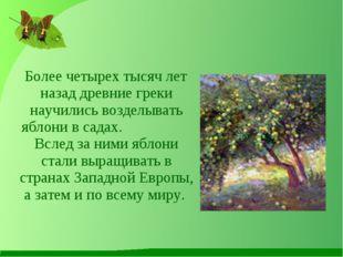 Более четырех тысяч лет назад древние греки научились возделывать яблони в с
