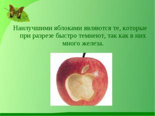 Наилучшими яблоками являются те, которые при разрезе быстро темнеют, так как