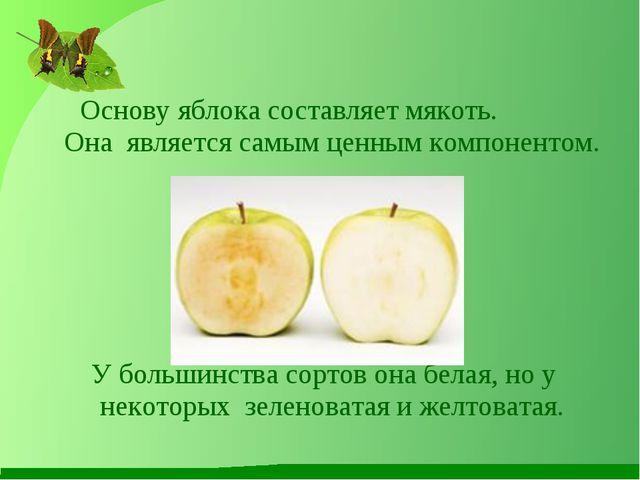 Основу яблока составляет мякоть. Она является самым ценным компонентом. У бо...