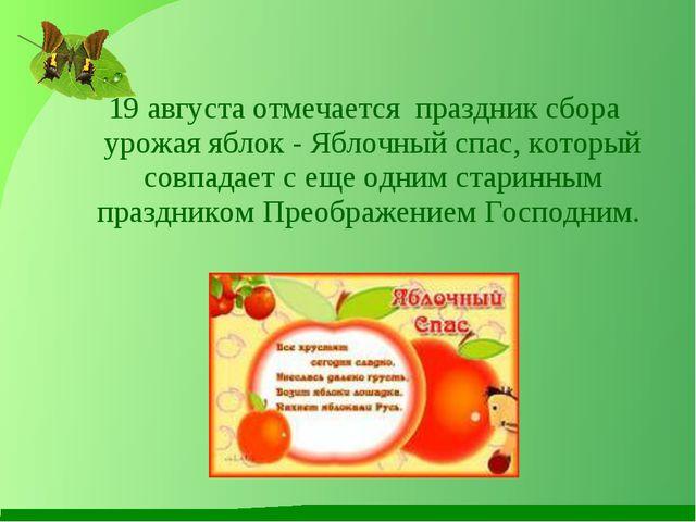 19 августа отмечается праздник сбора урожая яблок - Яблочный спас, который с...