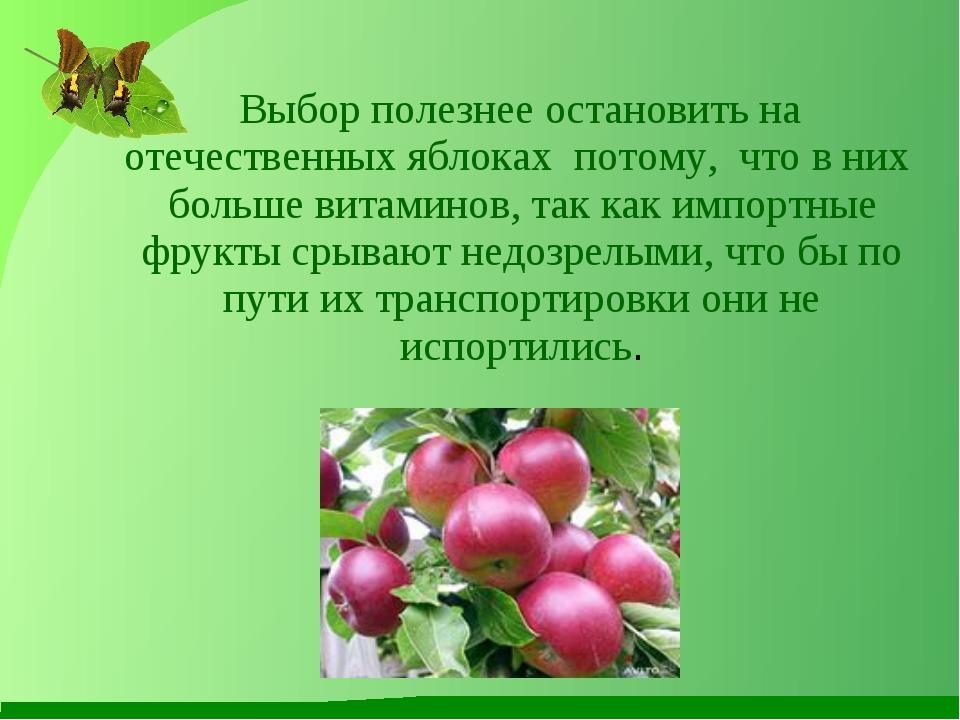 Выбор полезнее остановить на отечественных яблоках потому, что в них больше...