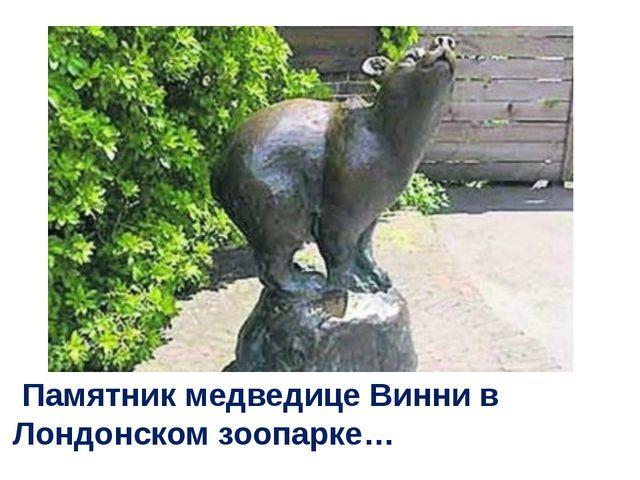 Памятник медведице Винни в Лондонском зоопарке…