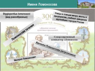 Stygiopontius lomonosovi (вид ракообразных) Имени Ломоносова www.themegallery