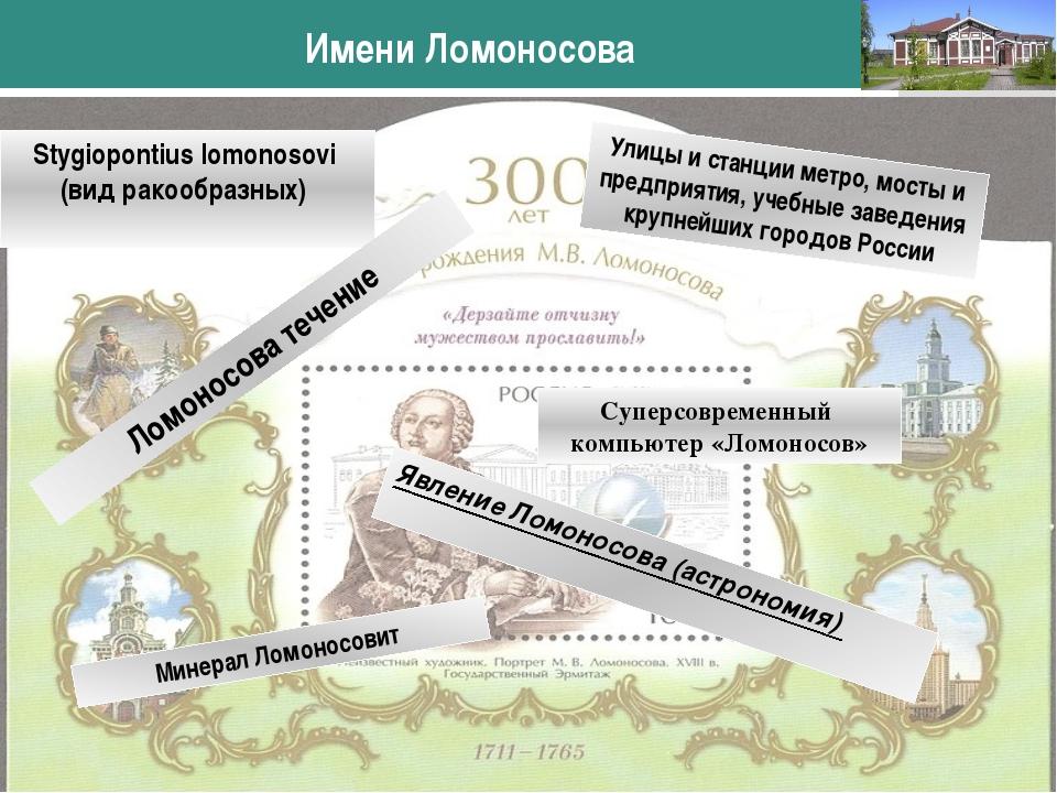 Stygiopontius lomonosovi (вид ракообразных) Имени Ломоносова www.themegallery...