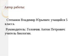 Автор работы: Степанов Владимир Юрьевич: учащийся 5 класса. Руководитель: Гол