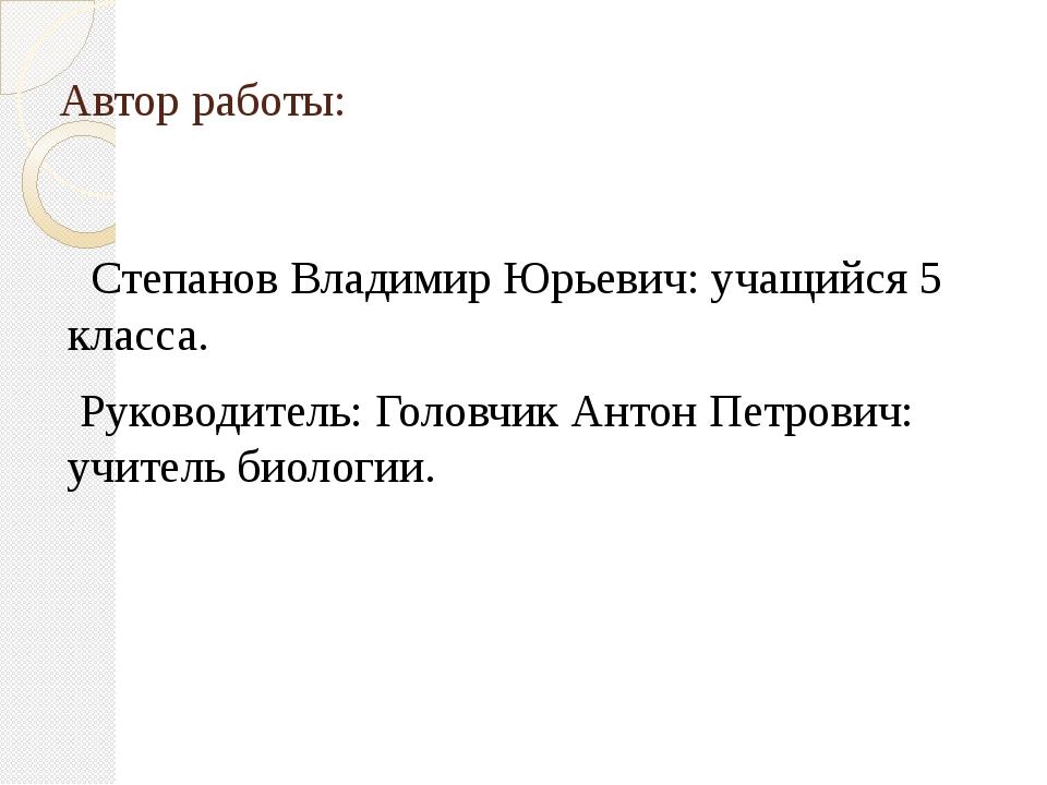 Автор работы: Степанов Владимир Юрьевич: учащийся 5 класса. Руководитель: Гол...