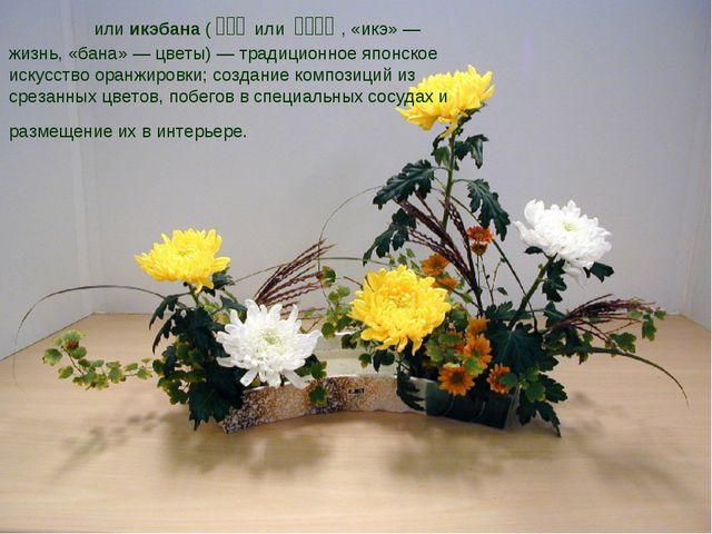 Икеба́на или икэбана (生け花 или いけばな, «икэ»— жизнь, «бана»— цветы)—...