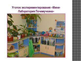 Уголок экспериментирования «Мини-Лаборатория Почемучкина»