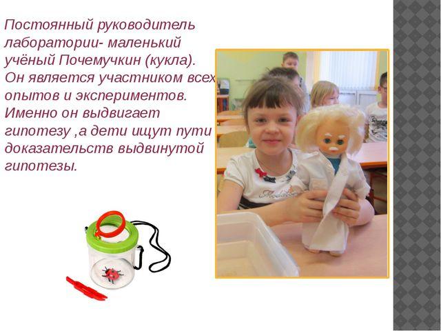 Постоянный руководитель лаборатории- маленький учёный Почемучкин (кукла). Он...