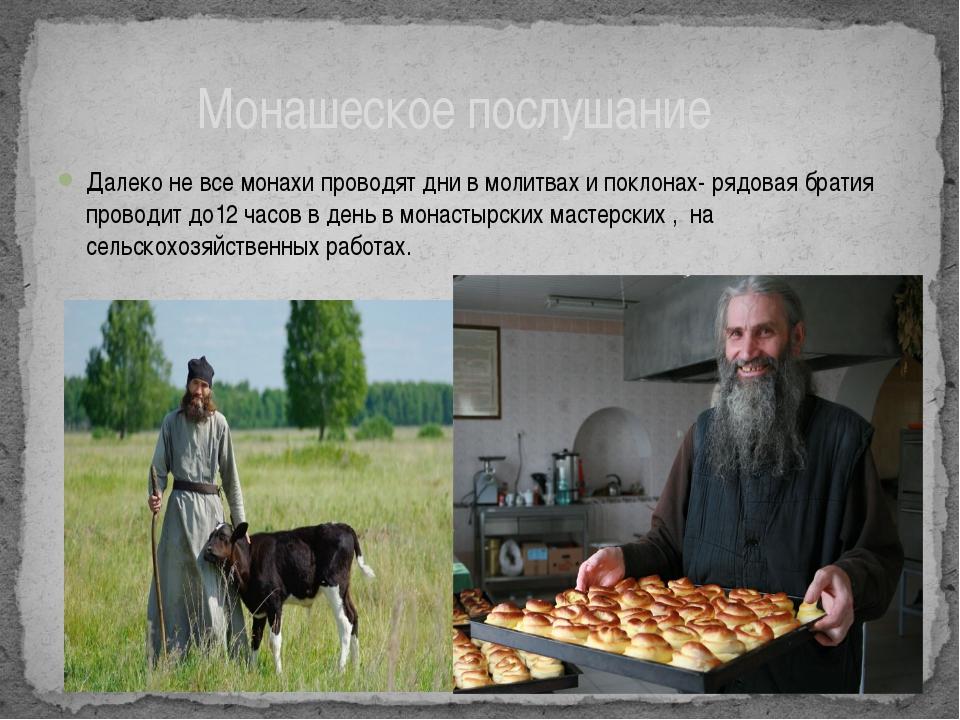 Далеко не все монахи проводят дни в молитвах и поклонах- рядовая братия прово...