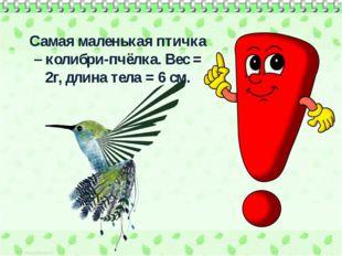 Самая маленькая птичка – колибри-пчёлка. Вес = 2г, длина тела = 6 см.