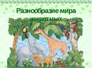 Разнообразие мира животных