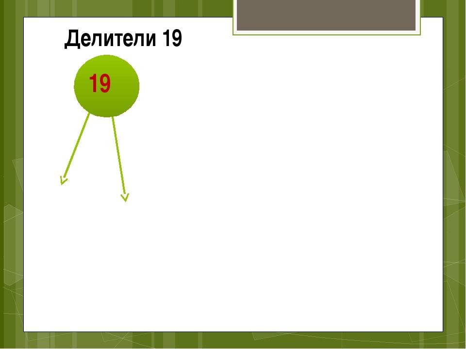 19 1 Делители 19 19