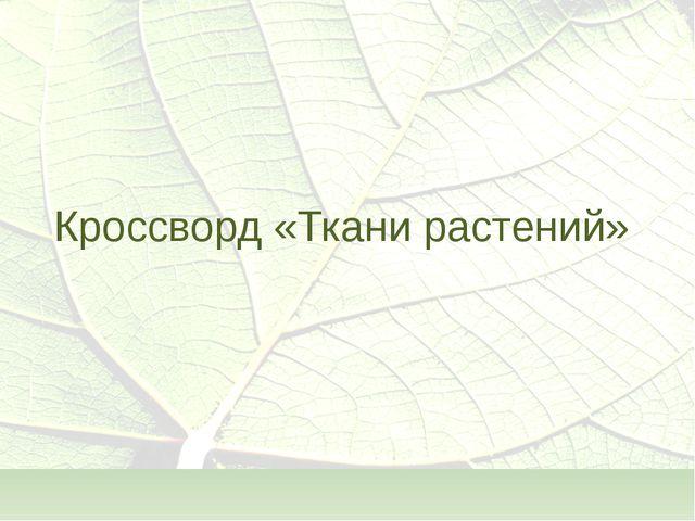 Кроссворд «Ткани растений»