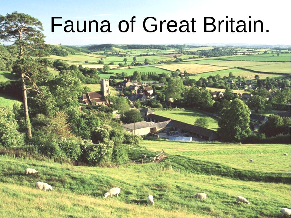 Fauna of Great Britain.