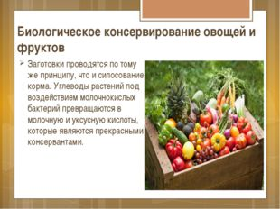 Биологическое консервирование овощей и фруктов Заготовки проводятся по тому ж