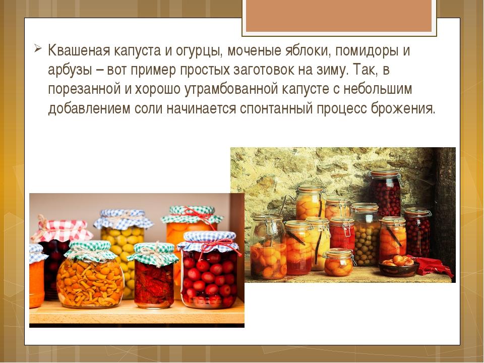 Квашеная капуста и огурцы, моченые яблоки, помидоры и арбузы – вот пример про...