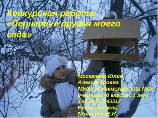 Конкурсная работа: «Пернатые друзья моего сада» Москалева Юлия Александровна