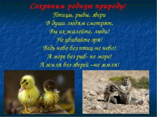 Сохраним родную природу! Птицы, рыбы, звери В души людям смотрят, Вы их жалей