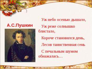 А.С.Пушкин Уж небо осенью дышало, Уж реже солнышко блистало, Короче становилс