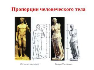(Из «Арифметики» Л.Ф. Магницкого.) Некий господин позвал плотника и велел дво