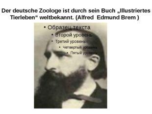 """Der deutsche Zoologe ist durch sein Buch """"Illustriertes Tierleben"""" weltbekann"""