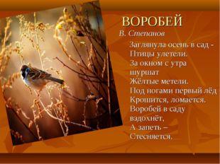 ВОРОБЕЙ В. Степанов Заглянула осень в сад - Птицы улетели. За окном с утра шу