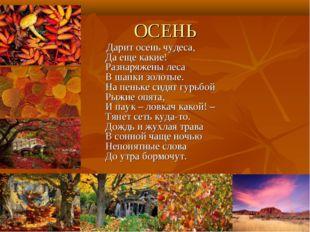 ОСЕНЬ Дарит осень чудеса, Да еще какие! Разнаряжены леса В шапки золотые. На