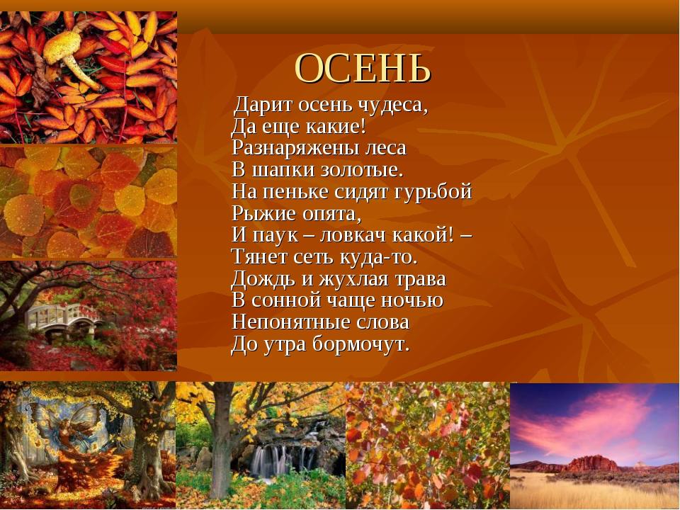 ОСЕНЬ Дарит осень чудеса, Да еще какие! Разнаряжены леса В шапки золотые. На...