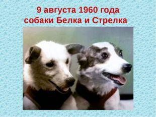 9 августа 1960 года собакиБелка и Стрелка