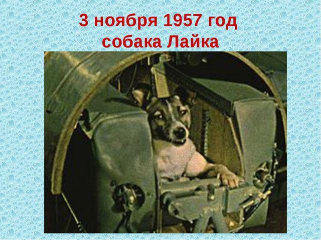 3 ноября 1957 год собака Лайка