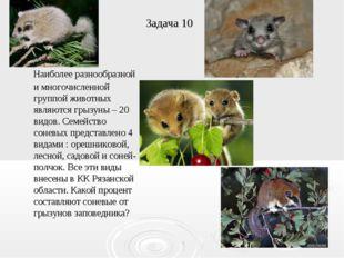 Задача 10 Наиболее разнообразной и многочисленной группой животных являются г