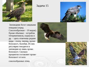 Задача 15 Заповедник богат хищными птицами (отряд Соколообразные – 10 видов).