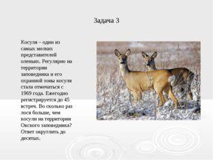 Задача 3 Косуля – один из самых мелких представителей оленьих. Регулярно на т