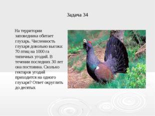 Задача 34 На территории заповедника обитает глухарь. Численность глухаря дово