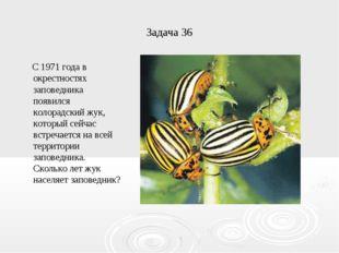 Задача 36 С 1971 года в окрестностях заповедника появился колорадский жук, ко
