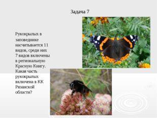 Задача 7 Рукокрылых в заповеднике насчитывается 11 видов, среди них 7 видов в