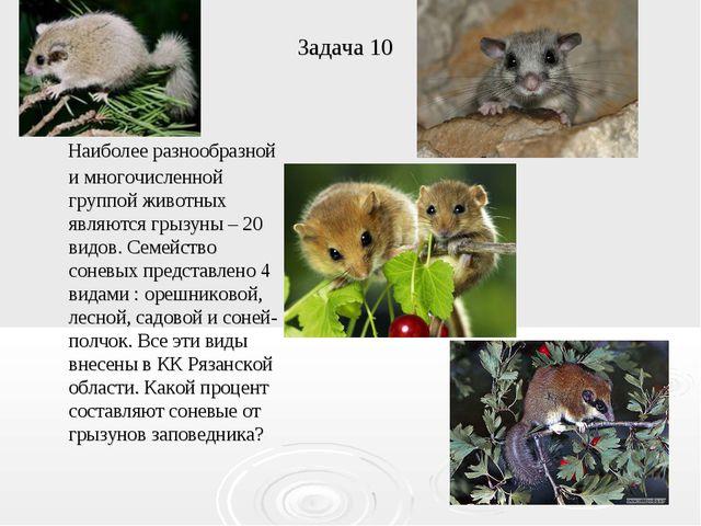 Задача 10 Наиболее разнообразной и многочисленной группой животных являются г...
