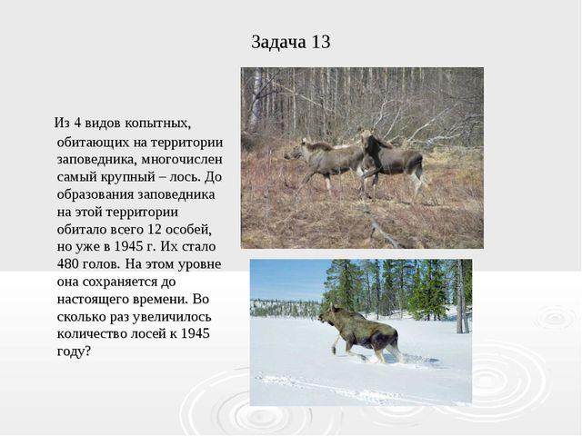 Задача 13 Из 4 видов копытных, обитающих на территории заповедника, многочисл...