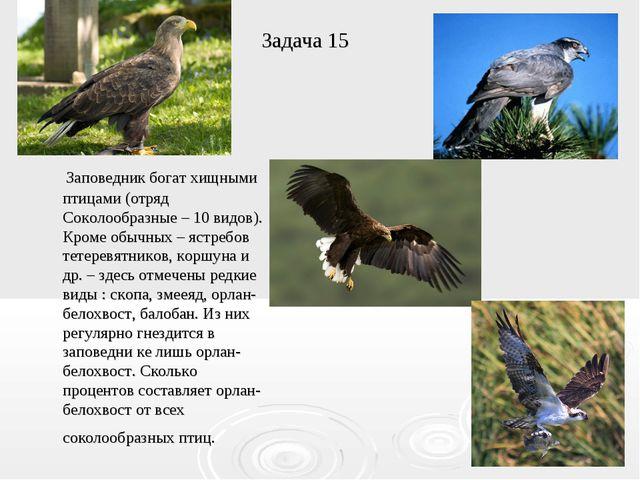 Задача 15 Заповедник богат хищными птицами (отряд Соколообразные – 10 видов)....