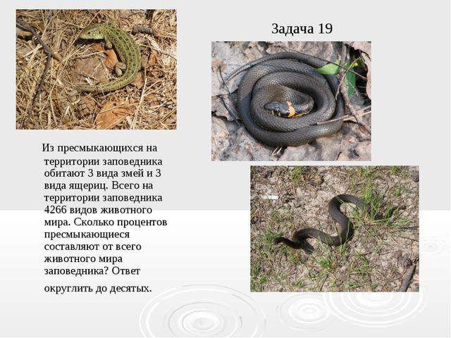 Задача 19 Из пресмыкающихся на территории заповедника обитают 3 вида змей и 3...