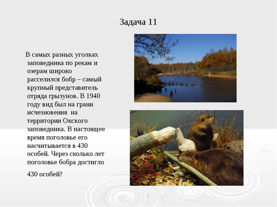 Задача 11 В самых разных уголках заповедника по рекам и озерам широко рассели...