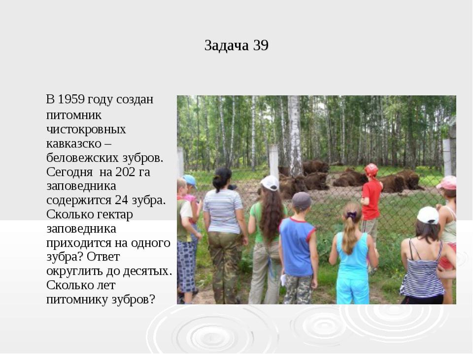 Задача 39 В 1959 году создан питомник чистокровных кавказско – беловежских зу...