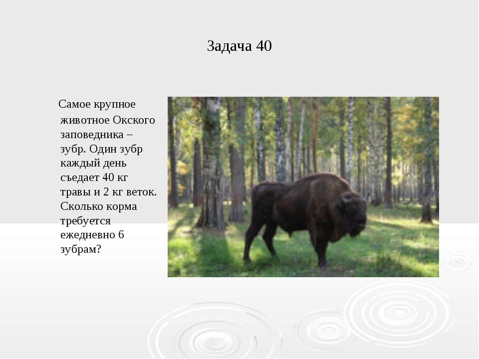 Задача 40 Самое крупное животное Окского заповедника – зубр. Один зубр каждый...