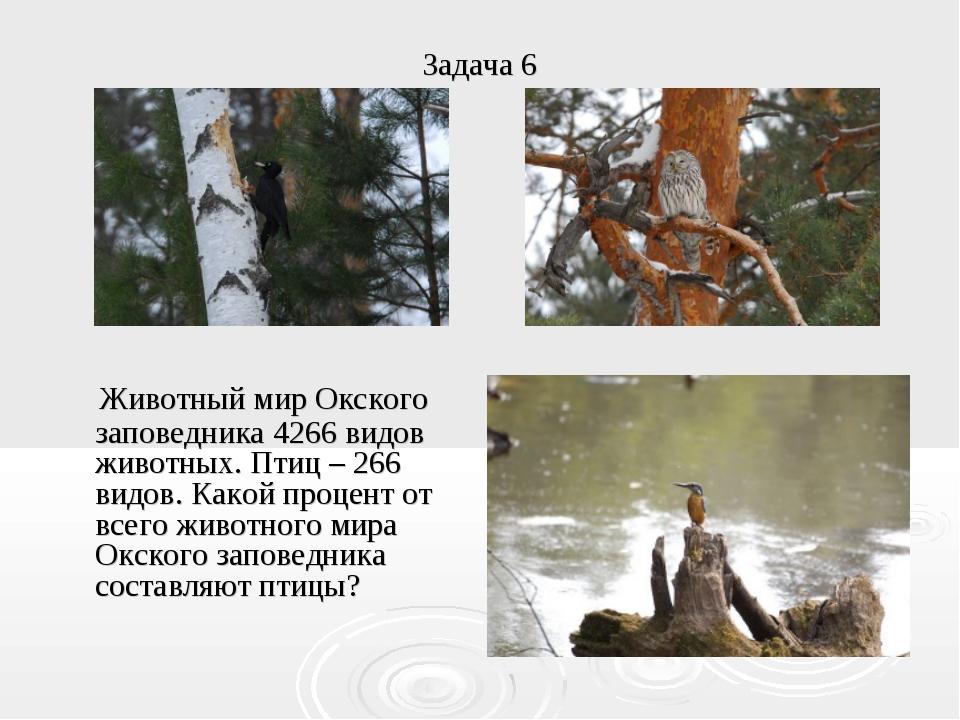 Задача 6 Животный мир Окского заповедника 4266 видов животных. Птиц – 266 вид...