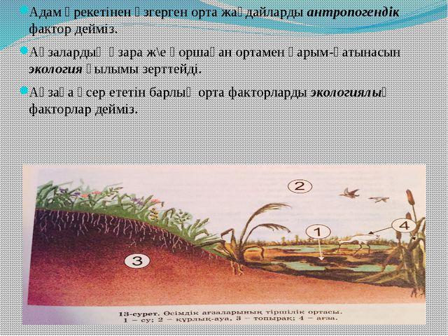 Адам әрекетінен өзгерген орта жағдайларды антропогендік фактор дейміз. Ағзала...