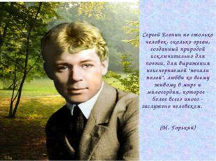 Сергей Есенин не столько человек, сколько орган, созданный природой исключите
